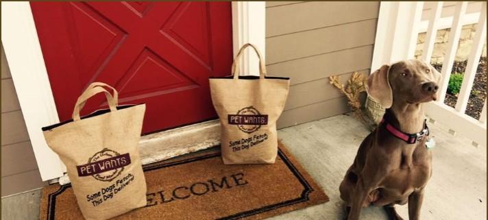 hond die wacht voor de deur opgenomen met slimme camera